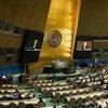 La Asamblea General de la ONU inicia su 71 debate general. Foto de archivo: ONU/Rick Bajornas