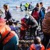 Refugiados sirios llegan a la isla de Lesbos desde Turquía en un bote inflable. Foto:  ACNUR/Achilleas Zavallis
