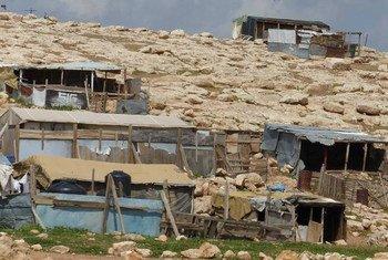 Une communauté de Bédouins palestiniens à Abu Nuwar, en Cisjordanie. Les Nations Unies considèrent que 46 communautés bédouines du centre de la Cisjordanie présentent un risque élevé de transfert forcé. (ONU)