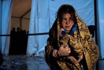 A young girl stands outside a tent at the Vinojug reception centre for refugees and migrants in Gevgelija, former Yugoslav Republic of Macedonia.
