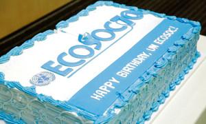 联合国经济和社会理事会成立70周年纪念日的庆祝蛋糕  联合国图片/Evan Schneider