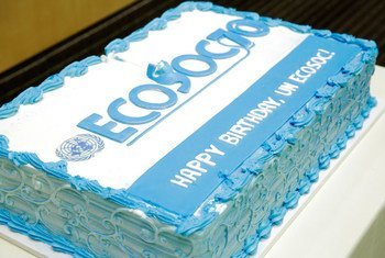 A cake to commemorate the 70th anniversary of the Economic and Social Council (ECOSOC).