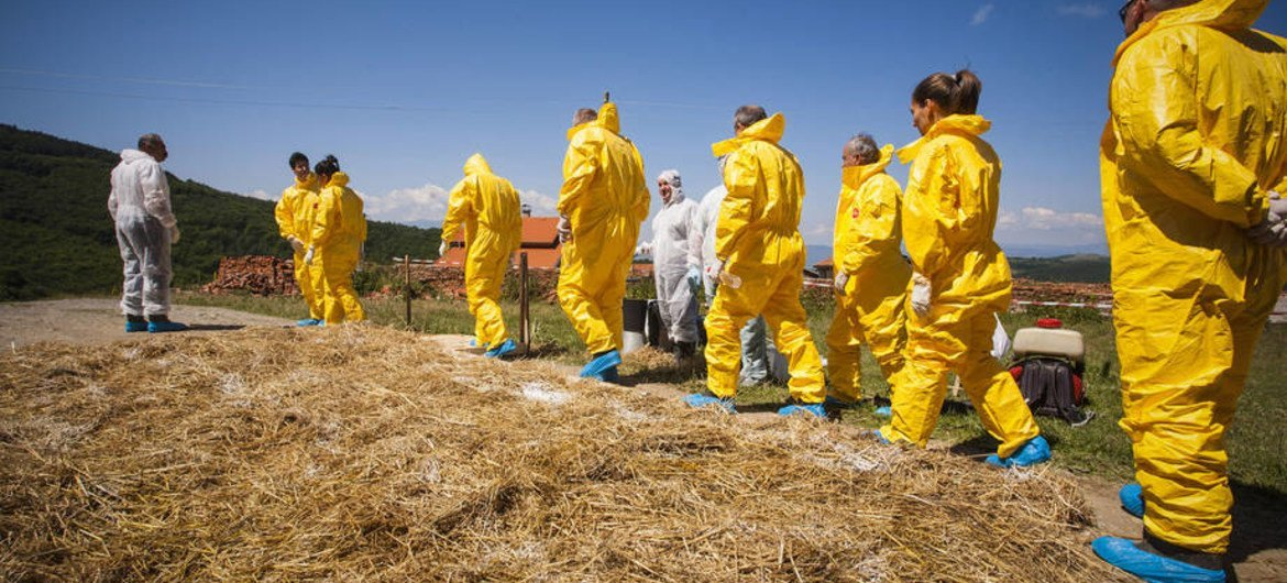 Health workers in Bulgaria train during an animal disease outbreak simulation exercise.