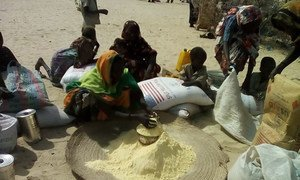WFP and partners have reached thousands of people recently displaced by Boko Haram in Chad and Cameroon with life-saving food and nutrition support.
