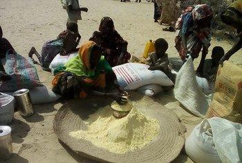 Le PAM et ses partenaires assistent des milliers de personnes déplacées par Boko Haram au Tchad et au Cameroun. Photo PAM Afrique de l'Ouest