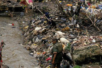 Environmental pollution and degradation can be linked to a growing list of health conditions such as skin cancer, lung cancer, asthma, lead poisoning, mercury poisoning, malaria, Ebola and Zika.