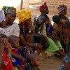 Le virus Ebola est très susceptible de se propager dans les pays voisins de la Guinée, estime l'OMS
