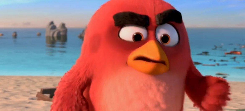 """El cardenal de los """"Pájaros Enojados"""". Foto: Captura de video UNTV"""