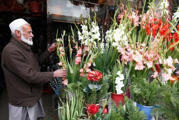 Afghans celebrate Nowruz – New Year – with special meals, decorations and gifts and it's a time for renewal and for promoting peace and solidarity.