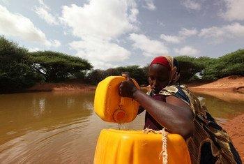 Una mujer somalí saca agua de un estanque hecho con apoyo del PNUD para aliviar a las comunidades afectadas por la sequía. Foto: PNUD Somalia