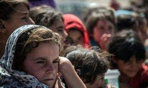 Les civils à Falloujah, en Iraq, ont besoin d'assistance. Photo OCHA Iraq