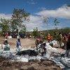Distribución de alimentos del PMA en Haití, uno de los Estados que forman parte de la categoría de Países Menos Desarrollados. Foto:/MINUSTAH/Nektarios Markogiannis