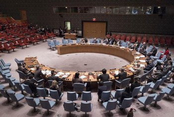 Security Council meeting on the situation in Yemen.