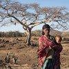 厄尔尼诺现象在东非的埃塞俄比亚造成了严重干旱。人道协调厅图片/Charlotte Cans