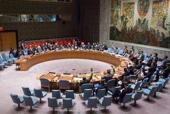 Совет Безопасности. Фото ООН/ Мануэль Элиас
