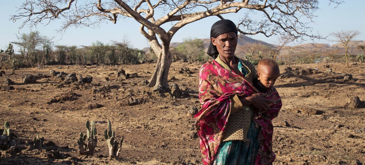 A severe drought in Ethiopia's Oromia region has left almost every family with hardly anything to feed themselves. (File)