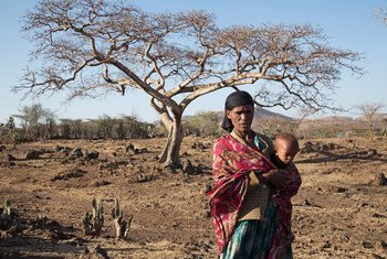 La région d'Oromia en Ethiopie frappée par la sécheresse (archives).