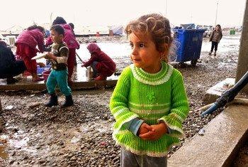 Девочка из семьи внутренних переселенцев в Ираке. Фото ООН/Брэндон Батерман
