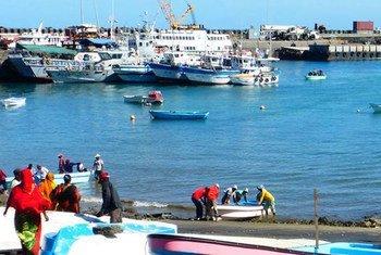 La pêche est l'une des principales industries aux Comores. Photo ONU Comores