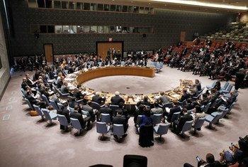 El Consejo de Seguridad de la ONU. Foto de archivo: ONU/Evan Schneide