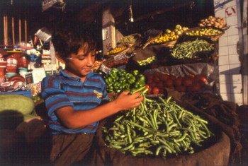 Un garçon à un étal de légumes sur un marché en Iraq. Photo UNESCO/Giacomo Pirozzi (archives)