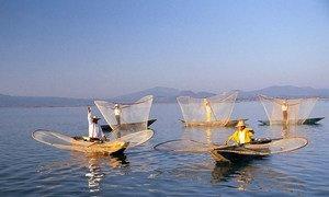 Fishing boats, Mexico.
