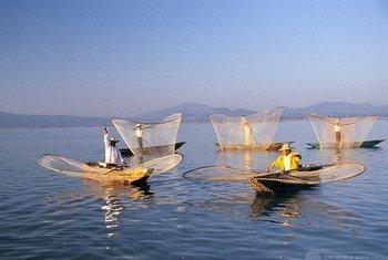 Pescadores en México. Foto: Banco Mundial/Curt Carnemark