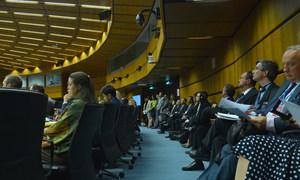 国际原子能机构执行董事会会议现场。原子能机构/Dean Calma
