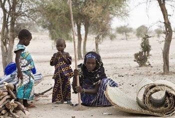 لاجئة نيجيرية تثبت قطب للبدء في بناء مأوى لها في مخيم بنطقة ديفا في النيجر.  مفوضية اللاجئين / هيلين كو