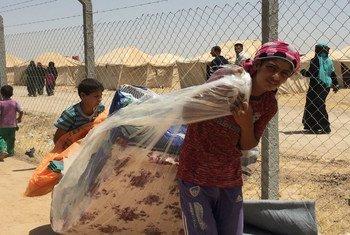 Distribución de emergencia humanitaria para desplazados de Fallujah. Foto: ACNUR/ Caroline Gluck