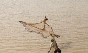 un pêcheur jetant son filet dans le bassin d'Arikouka, à Tera, au Niger.