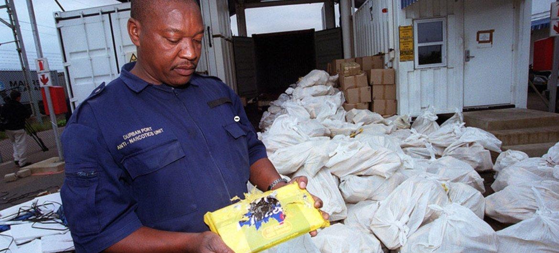 Autoridades de Sudáfrica con un cargamento incautado de drogas ilícitas.