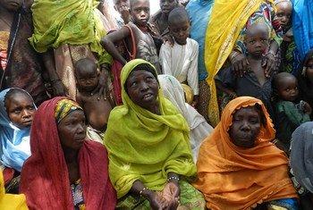 Детям на севере Нигерии грозит голодная смерть Фото ФАО/Патрик Дейвид