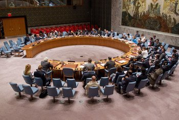 A wide view of the Security Council (file photo).