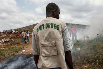 Un employé de l'équipe anti-drogues de la police nationale du Libéria examine une décharge municipale à l'extérieur de Monrovia, au Libéria (archives). Photo ONU/Staton Winter