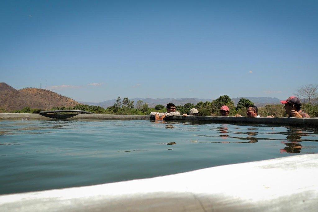 La FAO colabora desde hace tiempo en proyectos para aumentar la capacidad de los agricultores del corredor seco de Centroamérica, como este sistema de riego.
