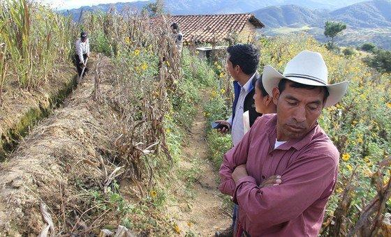 Agricultores precisam encontrar novas formas e maneiras mais eficientes de produzir alimentos, by Foto FAO