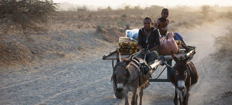 Etiopía sufre una prolongada sequía agravada por El Niño. Foto: OCHA/ Charlotte Cans