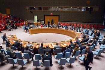 Совет Безопасности Фото ООН/Мануэль Элиас