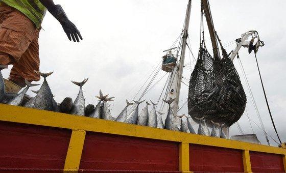Pessoas trabalhando na indústria pesqueira e em plataformas offshore também estão afetadas pela crise.