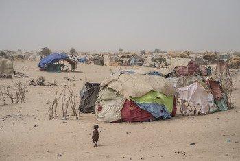 La région de Diffa, au Niger, accueille de nombreuses personnes déplacées par les violences au Nigéria et dans le bassin du Lac Tchad.