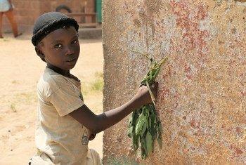 Une petite fille à Bangui, la capitale de la République centrafricaine (RCA).