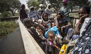 Nigerian refugees leave their camp in Ngouboua, on the coast of Lake Chad, in this image from February 2015.
