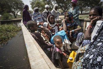 Des réfugiés nigérians quittent leur camp à Ngouboua, au bord du lac Tchad en février 2015.