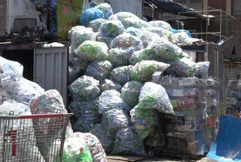 Latas y botellas recolectadas en espera de ser recogidas por las compañías distribuidoras en el centro de reciclaje de Sure We can. Foto ONU