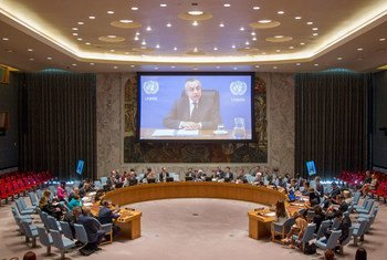 Zahir Tanin (shown on screen), Special Representative of the Secretary-General and Head of the United Nations Interim Administration Mission in Kosovo (UNMIK), briefs the Security Council via video tele conference.
