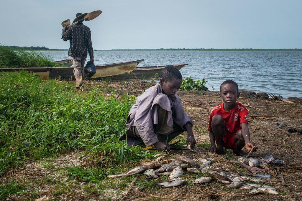 Des enfants préparent du poisson pêché qu'ils viennent de pêcher, dans le village de Tagal, dans la région du lac Tchad, au Tchad.
