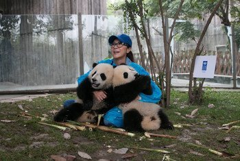Michelle Yeoh and UNDP announced the names of the panda ambassadors at the 7th Social Good Summit in New York.