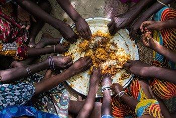 Des enfants mangeant un repas de riz et de poisson, dans le village de Tagal, dans la région du lac Tchad, au Tchad.