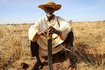 Un habitant du village de Dan Kada, dans la région de Maradi, au Niger en 2011. Amina J. Mohamed a souligné mardi le besoin d'une action collective mieux coordonnée dans le cadre de la Stratégie intégrée des Nations Unies pour le Sahel